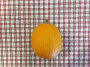 starting-pumpkin
